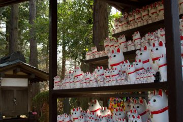 Hundreds of cat statues of different sizes are lined up in one area