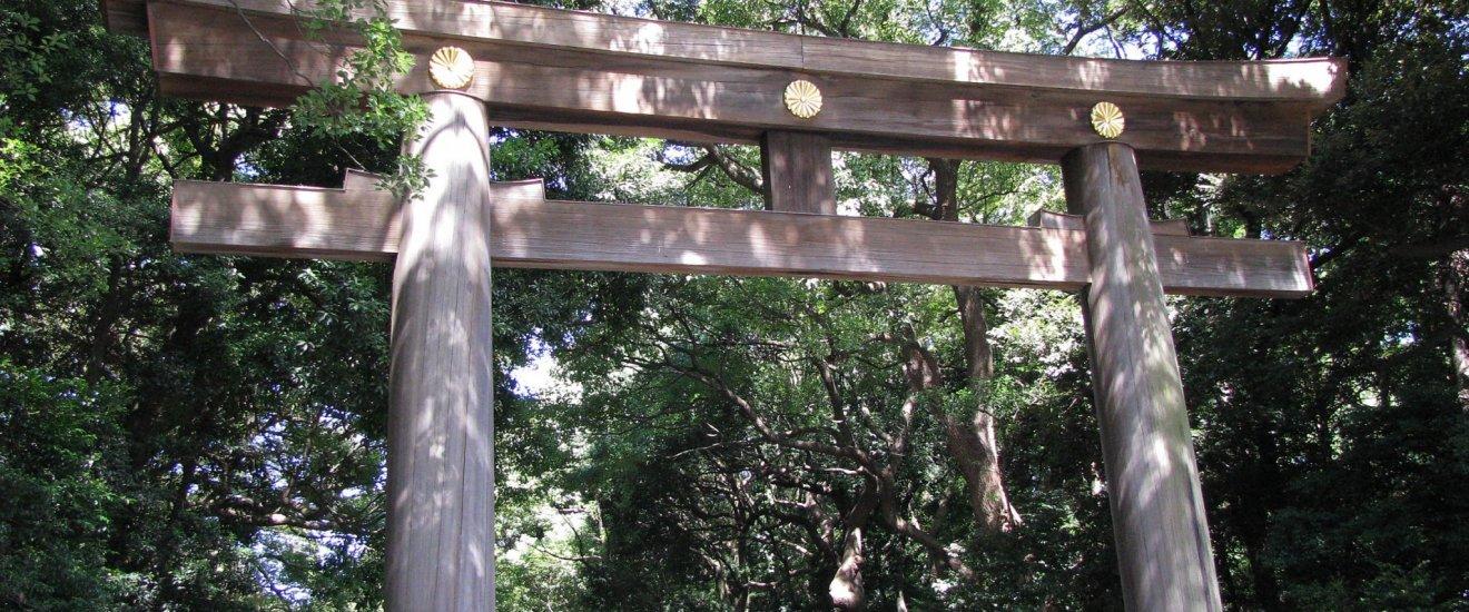 Тории входа в храм Мейдзи Дзингу