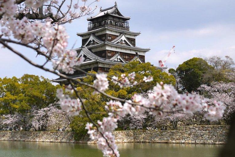 Kecantikan Sakura di Hiroshima