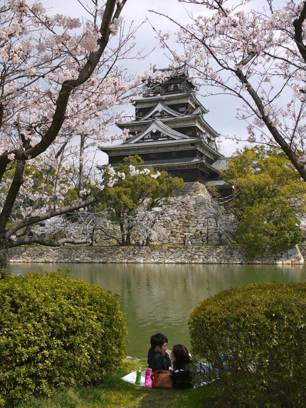 Des groupes de visiteurs pique-niquent sous la canopée des fleurs roses face au château
