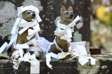 Two stone dogs sit patiently, covered in paper slips for good fortune.