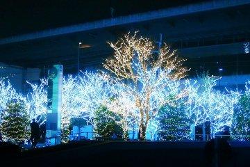 Kyocera Headquarters Illumination & Concert 2017
