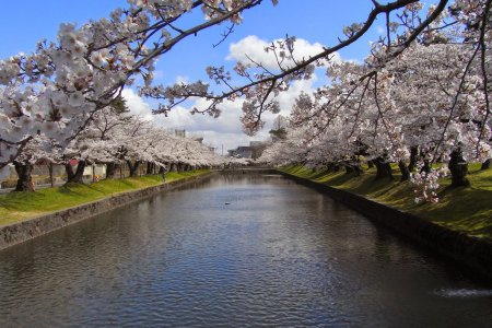 Things to Do in Tsuruoka City