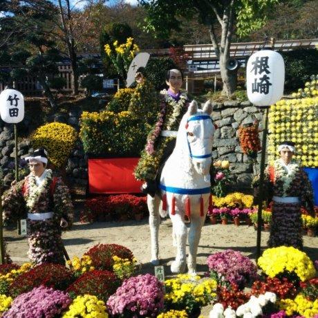 เทศกาลดอกเบญจมาศนิฮอนมัตซึต