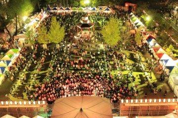 เทศกาล Saijo Sake Matsuri