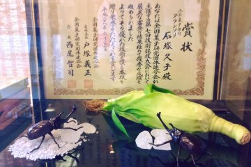 Экспонаты в Кикуя полностью сделаны из сладостей