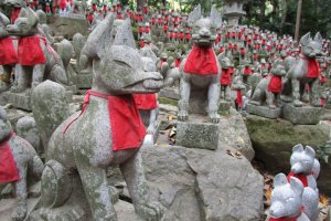 Countless foxes are donated to Toyokawa Inari Temple as a thank you for prayers answered