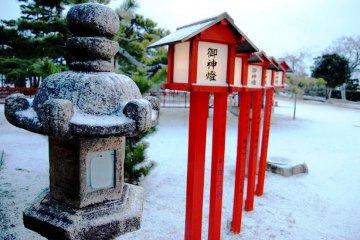 The beauty of a stone lantern in Shiga Prefecture