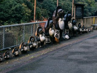 Tanuki, a family of raccoon badgers, standing in line at the station