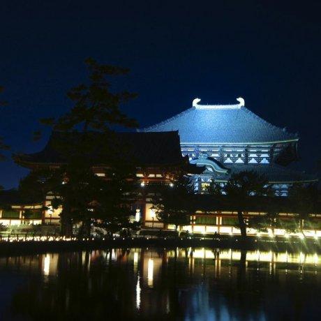 燈光映照奈良東大寺