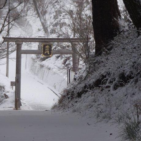 ฤดูหนาวในโยะชิโนะยะมะ