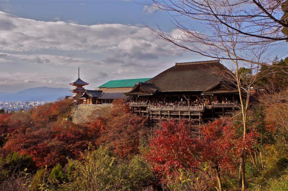 Autumn colors at the famous Kiyomizu-dera