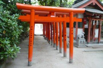 <p>Sumiyoshi shrine torii</p>