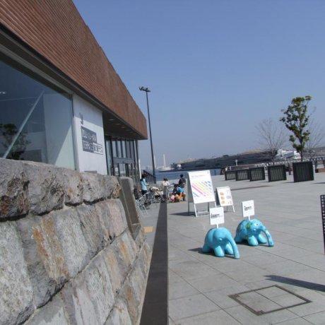 横滨湾的Zou-no-hana咖啡屋