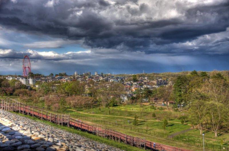 사야마 공원과 세이부 유원지의 전망