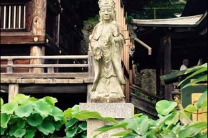 An image of Kannon in the garden between monks' quarters and temple
