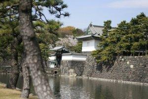 คูน้ำและทรากกำแพงปราสาทเอโดะ