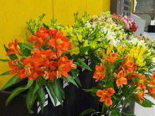 ช่อดอกไม้ที่จัดแสดงอยู่หน้าห้องประมูล