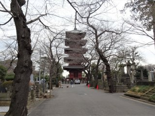 เจดีย์ห้าชั้นที่เก่าแก่ที่สุดในโตเกียว มีความสูง 29.4 เมตร ด้วยโครงสร้างคานไม้หนาแบบโบราณ