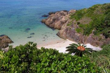 Unspoiled Paradise Ishigaki Island