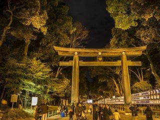 Единственная пора, когда можно сфотографировать храм Мейдзи после наступления темноты - это канун Нового Года, когда люди идут молиться