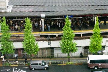 В часы пик здесь большие толпы, но по удобству расположения Синагаву мало что может превзойти