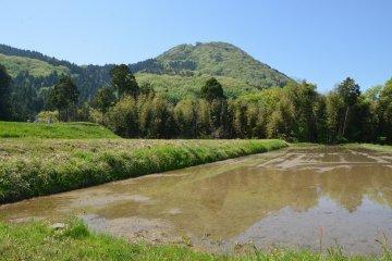 Гора Такасу. Снимок сделан на высоте около 200 метров, поэтому открывающийся отсюда обзор еще весьма скромен. Вершина горы расположена на уровне 438 метров