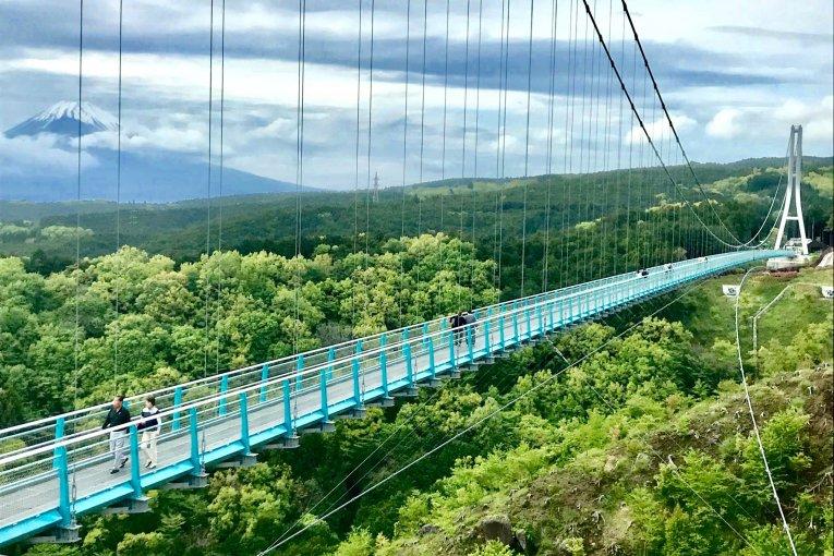 Mishima: Water, History & Mt. Fuji