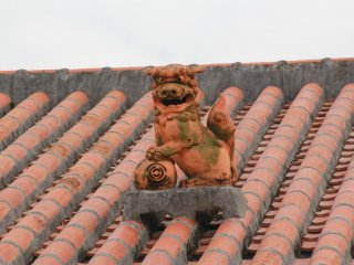 Rooftops usually are adorned with one shisa dog made of red clay to match the Ryukyuan-style red roofing tiles