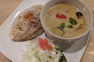 The Green curry - delicious!