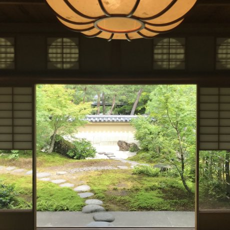 Enjoying the Adachi Museum of Art