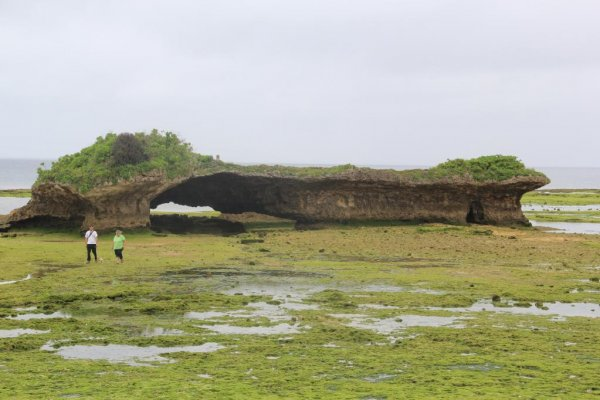 Toguchi Park and Beach is a clammer\'s paradise during low tide when the moon is full