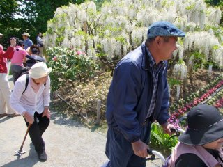 A great park for the elderly and wheelchair-bound