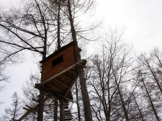 Treehouse will be getting some use shortly