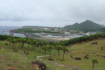 <p>언덕 위에서 바라본 섬의 경치</p>