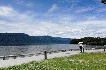 The lake shore