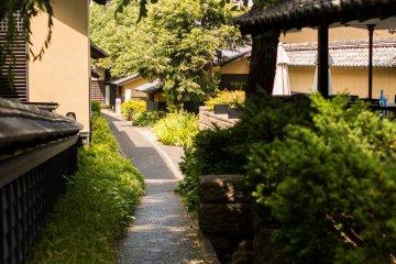Kurinokomichi (The Chestnut Alley)