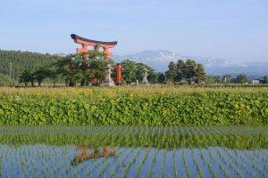 Gassan Ryujin Marathon & Journey of Rebirth Tour (3N4D)