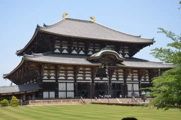 奈良大佛之旅