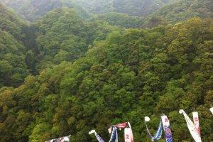 The dreamlike Hitachiota hills