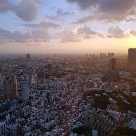 Tokyo Tower: Top Deck Tour
