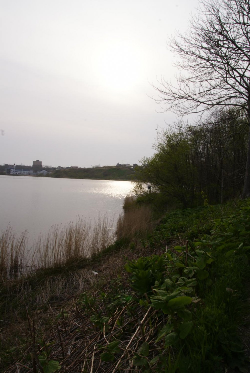 A walk around Lake Harutori in Kushiro