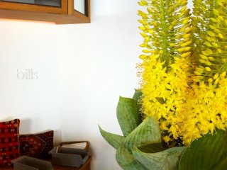 Beautiful flowers at the reception desk illuminates your dining experience