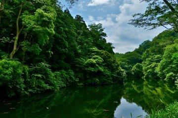 鎌倉湖 湖畔道を歩く