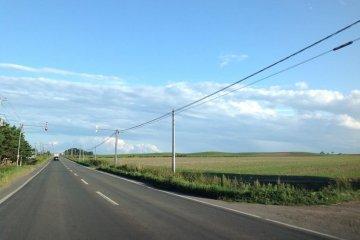 北海道的乡村道路还是很有感觉的