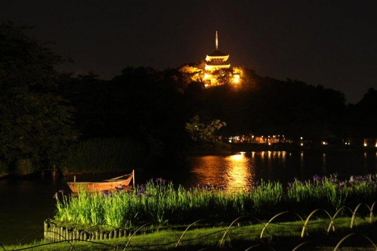 三渓園 蛍の夕べ