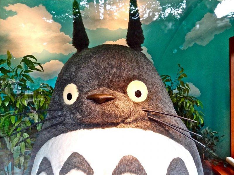 <p>Я шпион, Тоторо! Мягкое существо приветствует тебя из ветрины у главного входа</p>