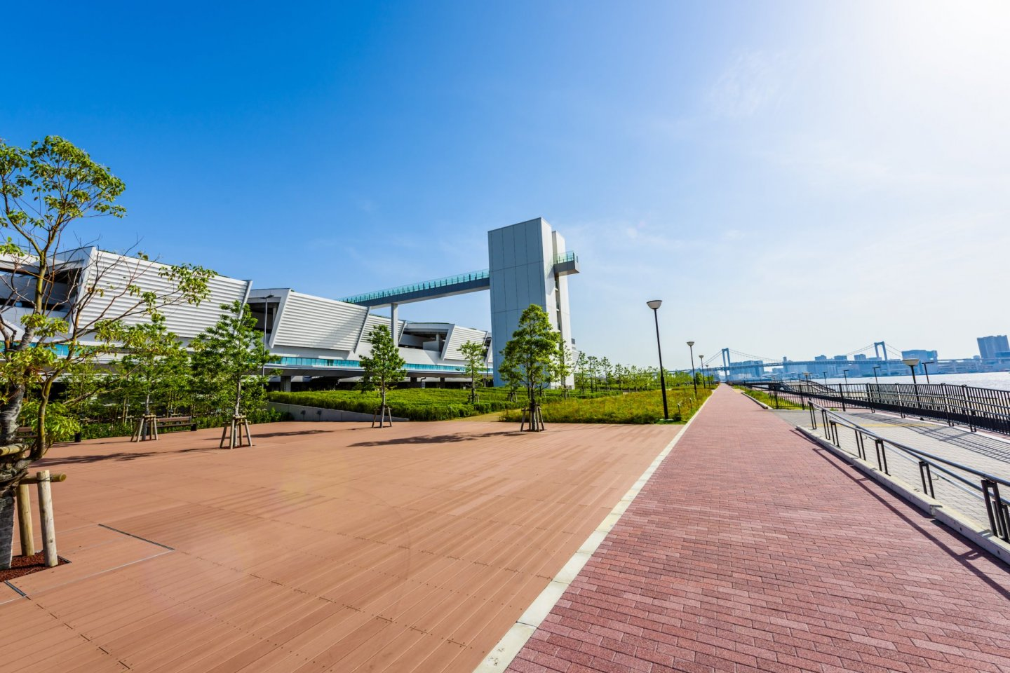 Toyosu Fish Market seen from Toyosu Gururi Park