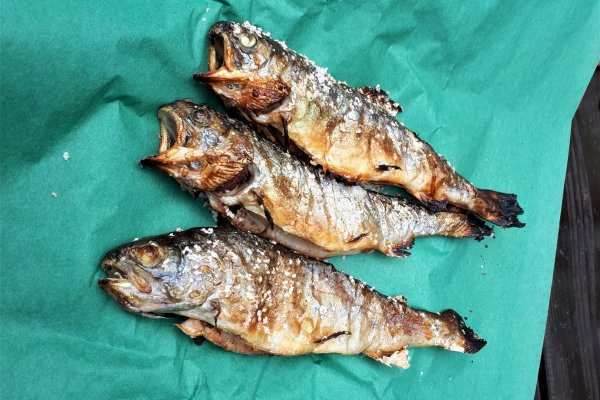 Salted and grilled, these trout were delicious