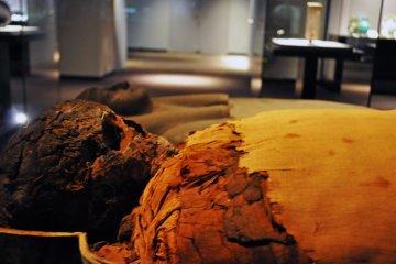 Mummy of Pasherienptah. 945-730 BC.